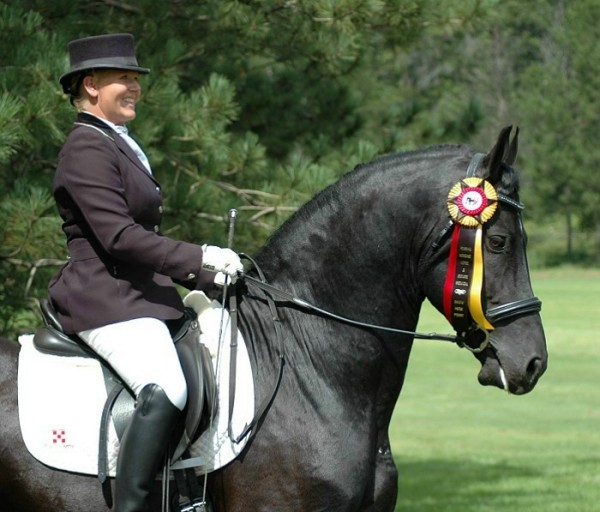 Friesian Stallion Mago of Carisbrooke with rider Tyra Vernon