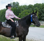 Brooke Pape & Friesian Heritage horse Punchinello