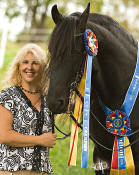 Friesian Sport Horse Designated Stallion Diederik-3rd Level Dressage