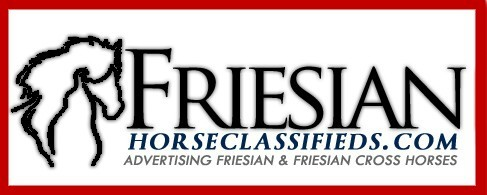 Friesian Horse Classifieds